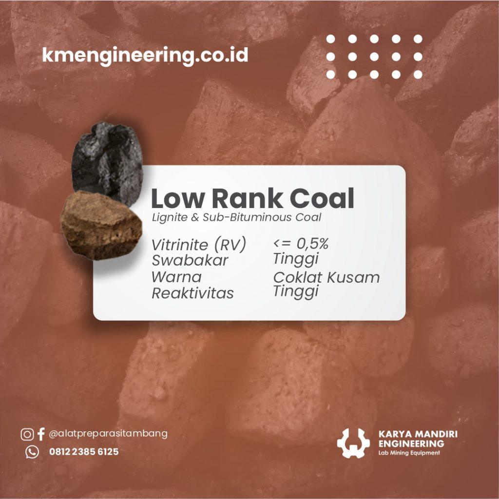 Low Rank Coal